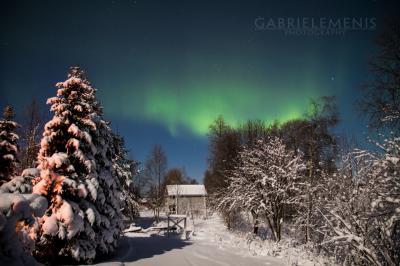 Tour fotografico a caccia dell'aurora boreale in Lapponia