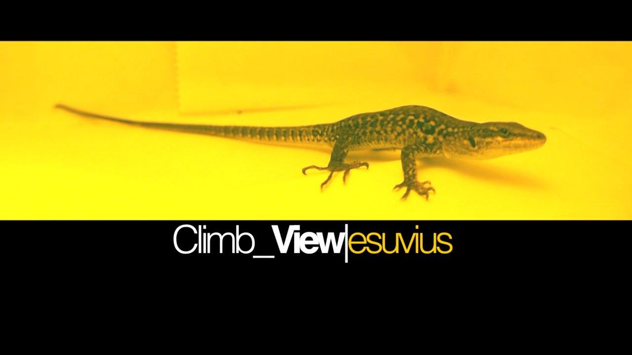 Climb View|Suvius