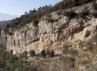 Arco - Massone