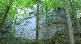 Algersdorfer Wand