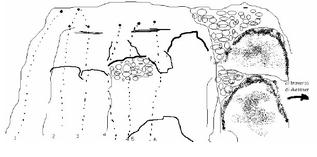 Sasso delle Grotte mappa vie - Erika