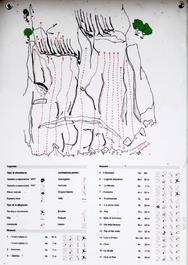 Mappa delle vie - Marco Arrigoni