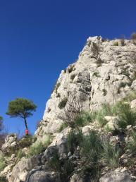 Lo sperone roccioso visto dal sentiero d'accesso. - Andrea Righetti
