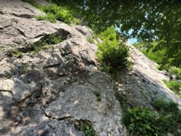 Vista muro Introbio - Jimmy