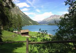 Plaun da Lej - Alps