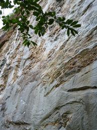 Vista di una sezione della Parete - Piedmont Climbing