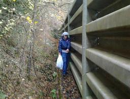 Il postmoderno sentiero di accesso a ridosso del guardrail - roberto